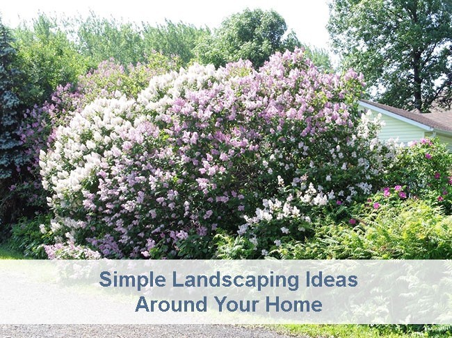 Simple Landscaping Around Your Home